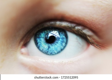 blue eye of a kid