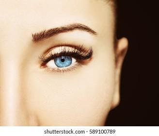 Blue Eye Makeup. Beautiful Eyes Make up detail, perfect beauty eyelashes