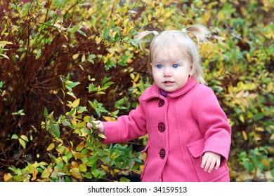 Blue eyes girl in the autumn park