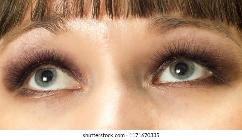 blue eyes makeup closeup  brunette  woman