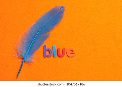A blue feather with the word blue on an orange background