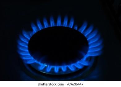Blue Fire - Cooker