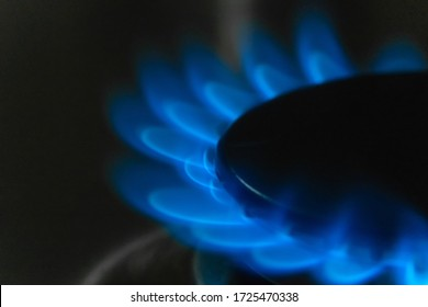Blue flame of burning gas on a gas stove macro