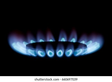 Blue gas flame on a black background. The concept of energy conservation. Natural resources
