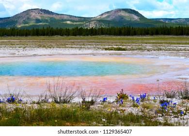 Blue Geyser Basin at Yellowstone Lake in Yellowstone National park,Wyoming, USA. Beautiful vivid colors.