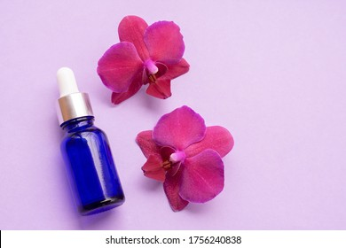 Blue glass bottle filled by essence or serum with orchid extract on purple background with bright blossoming orchids phalaenopsis. Eco cosmetic concept, copy space