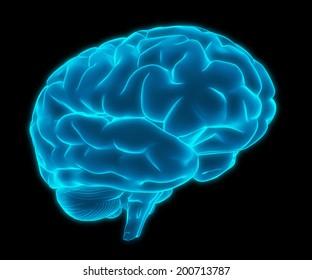blue glowing brain