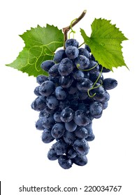 Blue grapes bunch isolated on white background as package design element