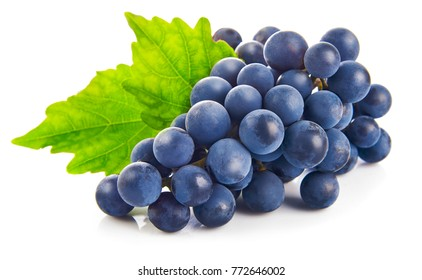 Blue grapes with green leaf healthy eating, isolated on white background.