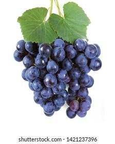 Blue grapes with leaves isolated on white