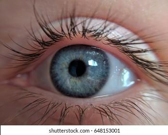 blue gray eye