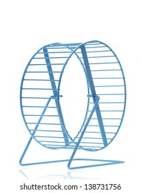 Blue hamster wheel on a white background