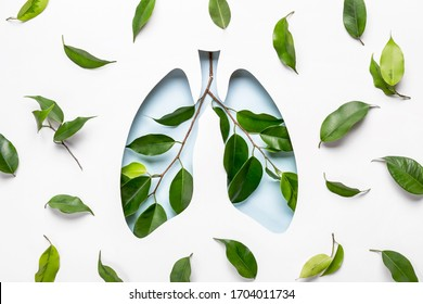 Blue Hole Lungs and green twigs as symbol of healthy lungs. World Tuberculosis Day or World Lung Day concept. Minimal Paper Art.
