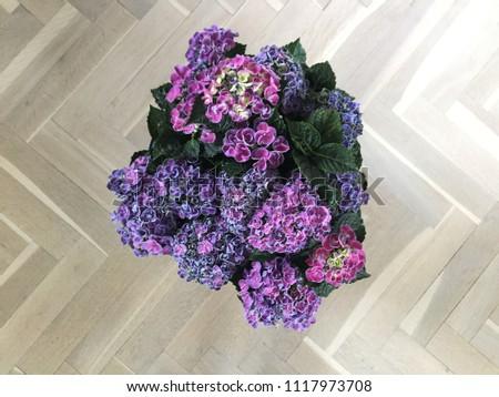 Floor Vase Hydrangea on fruit vase, colored pencil vase, hyacinth vase, warrior vase, hydro vase, orange poppy vase, hibiscus vase, gardenia vase, lily vase, peony vase, rubin's vase, geometric vase, the blue vase, iron wall vase, lilies of the valley vase, succulent vase, bonsai vase, wedding bouquet vase, curly willow vase, wisteria vase,