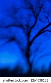 The Blue Hour; Balcones Canyonlands National Wildlife Refuge, Te
