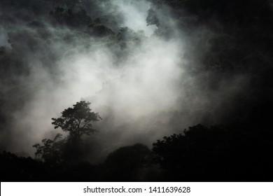 Blue hour at the foggy cloud forest of San Gerardo de Dota. Landscape of Costa Rica.