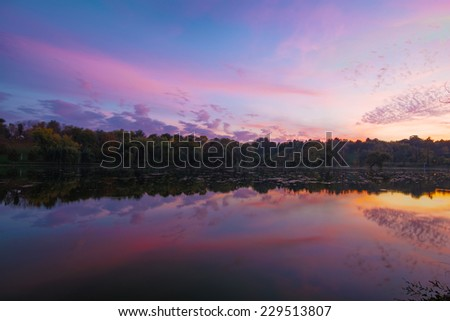 08c3f4a007ba Blue Hour On Lake Park Trees Stock Photo (Edit Now) 229513807 ...