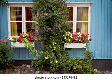 Blue house with pretty flowers and windows