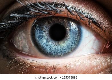 Blue human eye extreme macro shot