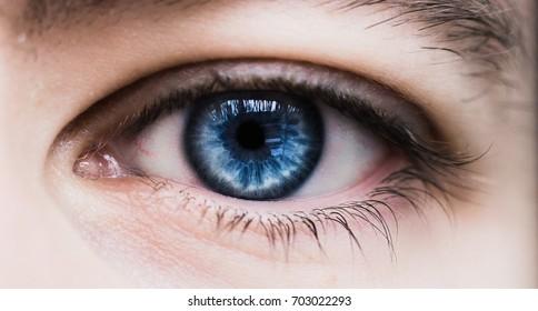 Blue human eye macro closeup