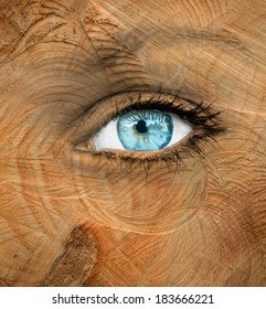 Blue human eye with wood texture - Aging concept