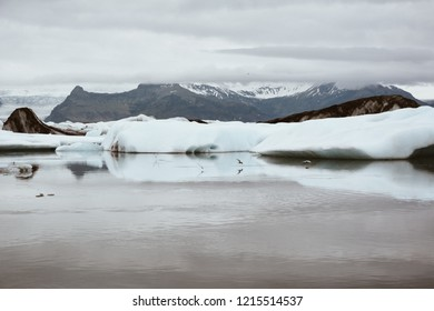 Blue icebergs floating in Jokulsarlon glacial, Iceland in summer at dusk, reflections in the water. Vintage style with grain.