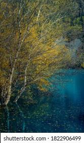 Blue Issyk lake Golden autumn in Almaty mountains