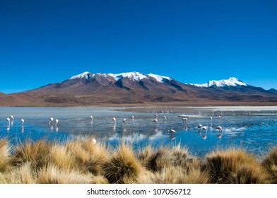 Blue Lagoon, Bolivia