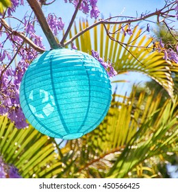 blue lampion in a tree