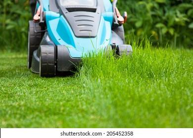 blue lawn mower on green juicy grass