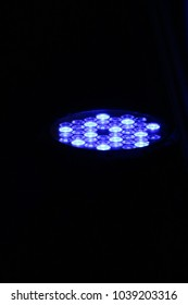 blue led uplighting