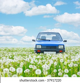 Blue little car in deep meadow's herbs under blue sky with airy clouds