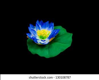 videos pornos gratis blue lotus massage