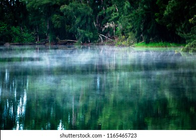 Blue mist or fog over a lake, shore with forest of green trees - Wolf Lake Park, Davie, Florida, USA