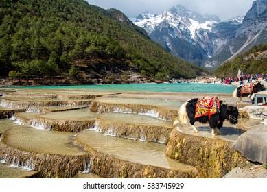 Blue moon Valley , White Water River waterfall and Jade Dragon Snow Mountain, Lijiang, Yunnan China.