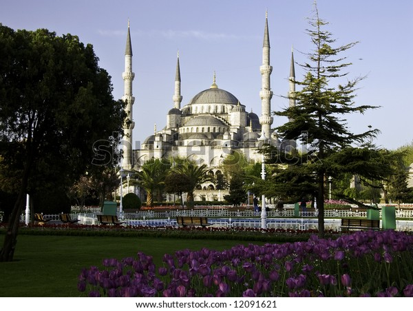 Blue Mosque in Istanbul with tulips in the foreground
