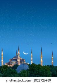 Blue Mosque, Istanbul under Moonlight, Turkey