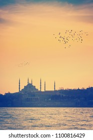 Blue Mosque at sunset - skyline of Istanbul with silhouettes of minarets and birds. Old oriental town - ancient landmarks of muslim architecture in ottoman style, soft light effect and pastel colors.