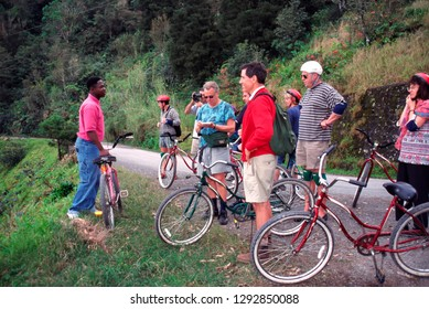 Blue Mountain, Jamaica, Downhill Bike Tour, March 2, 1999