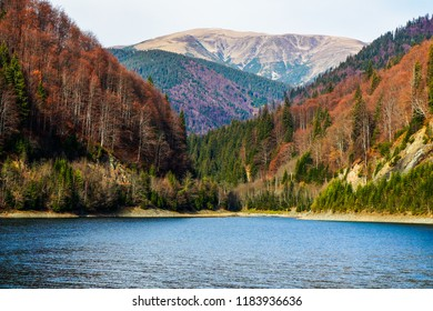 Blue mountain lake surrounded by hills and mountains covered in trees. Calm Autumn morning colours and tree textures. Lanscape of Rausor Lake in Arges, Romania.