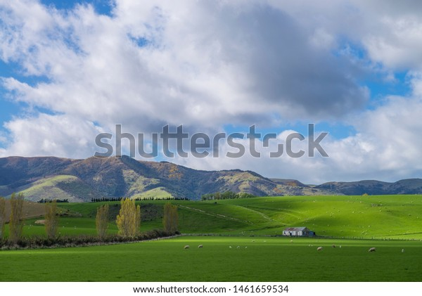 The Blue Mountains of West Otago, New Zealand.