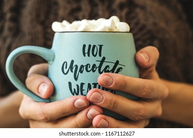 Blue mug with coffee, hot chocolate or cocoa with marshmallow in female hands. Inscription on cup Hot chocolate weather. Concept of warm cozy autumn or winter