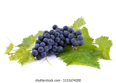 Blue Muscat grapes bunch isolated on white background, with grape green leaves.