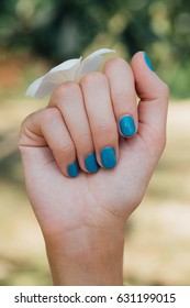 Blue nails, a new manicure. White plumeria Flower on hand With a turquoise bracelet . background of the jungle