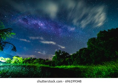 Blue night starry sky above countryside and Green field.  Night view of natural Milky Way glowing stars.