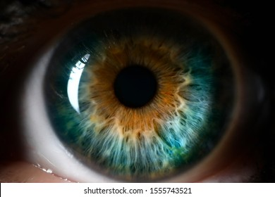 Blue orange human eye close up background. Color perception blindness concept
