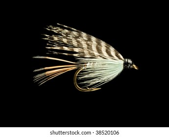 Blue and Orange Wet Trout Fishing Fly Isolated on Black Background