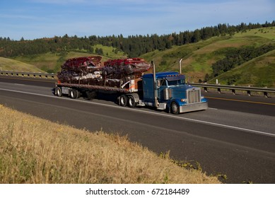 A blue Peterbilt pulls a flatbed trailer loaded with scrap cars. June 20th, 2017 Oregon, USA