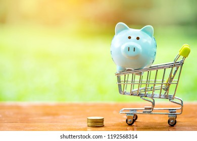 blue piggy bank and coin with miniature shopping cart on wooden mock up over blurred green garden on day noon light, Image for Saving and Shopping online concept.