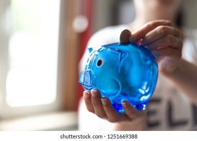 Blue piggy Bank in the hands of a young woman